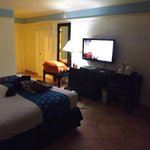 HUGE 1 bedroom with a king size bed. Well maintained