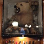 the white bear in the bar