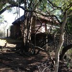 Foto de Marc's Treehouse Lodge