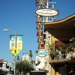 Φωτογραφία: Hollywood Downtowner Inn