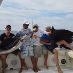 Lap ful of sailfish