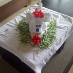 Towel Animal by Wilmar - Great Service Wilmar!