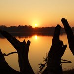 Sunrise over the Zambezi, absolutely beautiful (taken outside our tent)