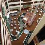 صورة فوتوغرافية لـ ‪Embassy Suites Hotel DFW Airport North/Outdoor World‬