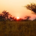 Sunset walk with the bushmen