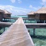 les water villas