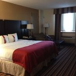 Φωτογραφία: Holiday Inn Philadelphia Stadium