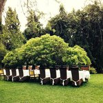table set under the tree