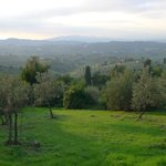 Picture of Tuscany