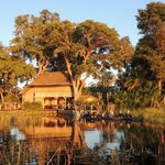 Beautiful Jacana Camp