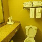 Φωτογραφία: Country Inn & Suites Dothan