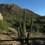 Bilde fra The Ritz-Carlton Dove Mountain
