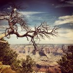 South Rim Overlook