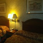 Φωτογραφία: Travel Inn Hotel New York