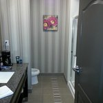 Foto de Hampton Inn Leesville/Ft. Polk