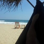 seen from the hammock at Harmony Beach Bungalows