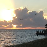 Φωτογραφία: Big Pine Key Fishing Lodge