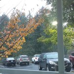 Fairfield Inn & Suites Portland South/Lake Oswego Foto