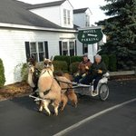 Arrival at the Century House - Special Transportation