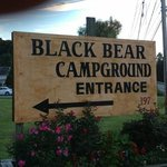 Black Bear Campground照片