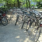 Bicycles near the Lake Lucerne