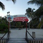 Captain Morgan's Retreat의 사진