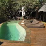 Motswiri Private Safari Lodge Foto