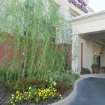 Photo de Hampton Inn & Suites Dothan
