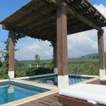 Foto de Asclepios Wellness & Healing Retreat