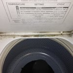 Is that mold growing inside the washer or just dirt?