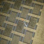 1 of the syringes outside our room