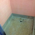 Mouldy shower area