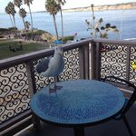 Фотография La Jolla Cove Suites