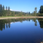 Wells Gray Golf Resort & RV Park의 사진