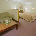 Foto Americas Best Value Inn & Suites-Tyler/Downtown