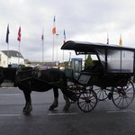 Horse drawn carriage ride outside hotel to Killarney National Park