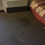 BEST WESTERN PLUS Westwood Inn Foto