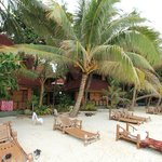 Alona Tropical Beach Resort의 사진