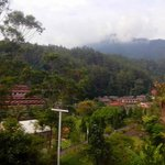 Casa Monte Rosa Hotel – Puncak Mountain Resort의 사진