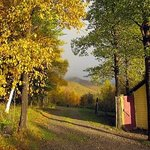 Zdjęcie The Maven Gypsy Bed & Breakfast & Cottages
