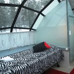 Glass Igloo inside