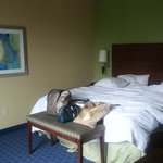 Bild från Hampton Inn & Suites Little Rock - Downtown
