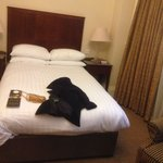 Executive double room....