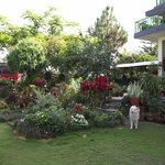 Grounds with the beautiful natured & soft Suhangma