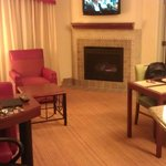 Living room, fireplace, dining area