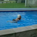 My 80yr young mum loving the heated pool