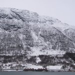 Cabins and harbour seen form opposite side of the fjord