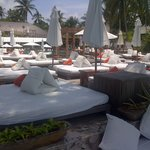 Foto de Nikki Beach Bungalow Resort