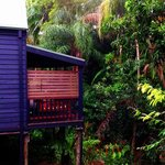 The Pocket Rainforest Retreat의 사진
