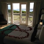 View from suite 4 & '20' birthday rose petals